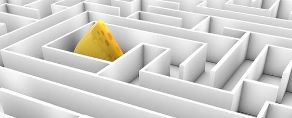Who moved my cheese? – Better Reality Ventures
